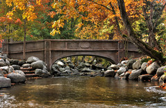Ted's Bridge 2014 (snaphappyd) Tags: park fall colors canon landscape bridges hdr lithia ononesoftware