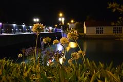 Trafalgar Street (nickwidd) Tags: new light river long exposure nelson zealand