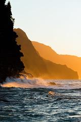 gold·en IX (IanLudwig) Tags: canon photography hawaii kauai hawaiian beaches tog togs niksoftware hawaiiphotos vsco cep4 canon5dmkiii hawaiianphotography 5dmkiii canon5dmarkiii ianludwig canon70200mmf28lisusmii lightroom5 canon2xtciii adobephotoshopcc