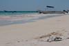 Caída Libre (Sergio Tohtli) Tags: bird beach mar playa aves ave gaviota impactoambiental impunidad tulúm environmentalimpact inconciencia mosaiconaturaméxico