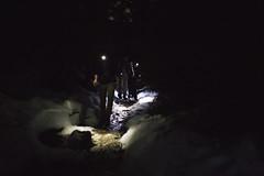 Twilight Hike Hollyburn Dec.5.2014 - 17