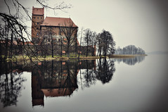The castle Trakai (Andi Mezger) Tags: sky tree berlin castle andy beer beautiful architecture dave