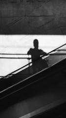 (S) Tags: street shadow brazil brasil sombra sp rua