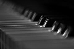 122614 - 262/365 (Explore) (Dan Fleury Photos) Tags: bw music macro keyboard piano explore instrument project365 p365