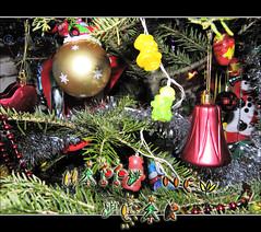 Happy New Year 2015! / Un an nou fericit! / Feliz año nuevo 2015! / Feliz ano novo 2015! / Glückliches neues jahr! / Bonne année 2015! (cod_gabriel) Tags: brad pom christmastree christmasballs newyearseve neujahr capodanno anonovo happynewyear añonuevo chrismas nouvelan jourdelan felizanonovo nytår glücklichesneuesjahr felizañonuevo bonneannée christmasbaubles buonanno gottnyttår sretnanovagodina godtnytår selamattahunbaru tahunbaru mutluyıllar szczęśliwegonowegoroku سنةجديدةسعيدة 새해복많이받으세요 สวัสดีปีใหม่ честитановагодина šťastnýnovýrok boldogújévet anobom سالنومبارک сновымгодом πρωτοχρονιά новагодина 明けましておめでとうございます сретнановагодина नयासालमुबारकहो lamulţiani नववर्ष pomdecrăciun رأسالسنة نیاسالمبارکہو 양력설 תחילתשנהחדשה happynew2015 felizañonuevo2015 felizanonovo2015 happynewyear2015 selamattahunbaru2015 lamulţiani2015