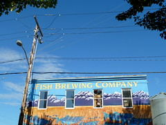 Fish Brewing Company brewhouse, viewed across the street from The Fish Bowl Brewpub, Olympia, Washington (Fish Tale Ales, Reel Ales, Leavenworth Brewing Company) (Matt Mimosa) Tags: streetlight bluesky powerlines fishbowl shade utilitypole brewpub wateringhole fishbrewing downtownolympia fishtaleales leavenworthbrewing smaugstout preciouspils bolgbelgian hobbitbeers