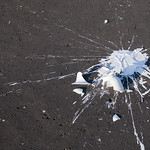 """Spilled paint<a href=""""http://www.flickr.com/photos/28211982@N07/16040123406/"""" target=""""_blank"""">View on Flickr</a>"""