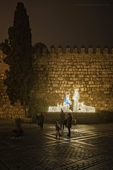 Sevilla en Navidad. II (Javier Martinez de la Ossa) Tags: christmas espaa navidad sevilla andaluca spain nikon seville alcazar nocturna espagne siviglia murallas d700 javiermartinezdelaossa