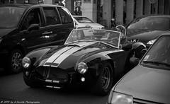 Paris 28-12-2014 (G.Surville Photographie) Tags: voyage street paris france photographie photos capitale rue canon6d ghislainsurville