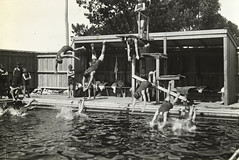 Diving in the swimming pool (State Library Victoria Collections) Tags: 1920s swimming diving pools 1920 swin swimmingpools statelibraryofvictoria statelibraryvictoria