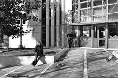 Street (Eleanna Kounoupa) Tags: street blackandwhite greece ελλάδα kifissia blackwhitephotos δρόμου κηφισιά stphotographia μαυρόασπρεσ