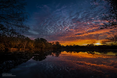 """""""With New Eyes..."""" (Jeff Stamer (Firefallphotography.com)) Tags: sunrise reflections florida longwood"""