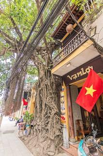 hanoi - vietnam 2015 13