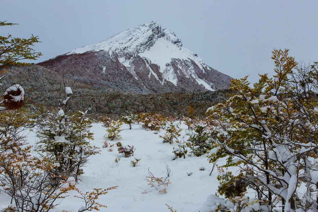 The World S Best Photos Of Invierno And Ushuaia Flickr Hive Mind