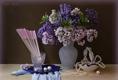 Feminine Elements (Esther Spektor - Thanks for 10+ millions views..) Tags: pink flowers blue stilllife brown white green beauty composition scarf canon fan necklace beads spring beige ceramics pattern basket purple crystal availablelight feminine plate stilleben pearls elements vase bouquet tabletop bodegon cobalt naturemorte naturamorta naturezamorta creativephotography artisticphoto estherspektor