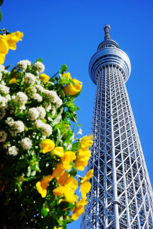 【日本,东京】东京晴空塔TOKYO SKYTREE 四周年生日快乐;东京地标不是要不要去的问题,而是要挑甚么时候去。