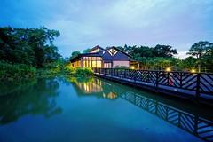 2016-05-14 18.52.29 (pang yu liu) Tags: park ecology pond 05 may daily eco pate    2016