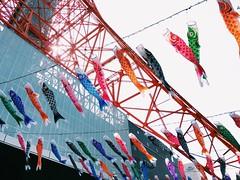 IMG_4803 (masashige) Tags: tower japan tokyo tokyotower koinobori