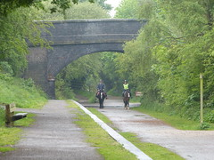 Wirral Way (Thomas Kelly 48) Tags: horses lumix panasonic wirral wirralway fz150