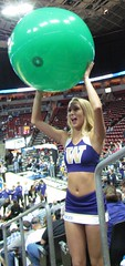 Getting ready to throw (bulgo125) Tags: college uw washington huskies cheerleader