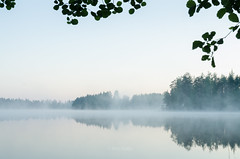 Early morning (grus_p) Tags: lake water landscape light mist luminanceborale morning nature tranquillity calmness nikon finland beautyofcalmness