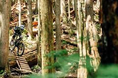 bc-enduro-shore-080516-ajbarlas-4426.jpg (a r d o r) Tags: mtb northvancouver enduro mountainbikes theshore mtbrace enduroracing ajbarlas ardorphotography bcenduroseries