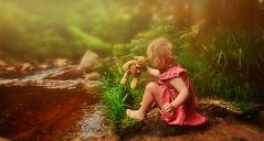 Play time at Irelands golden streams. (ciarasmyth462) Tags: teddy light baby stream forest ireland summer dress childhood outdoor woodland walks water woods wonder grass