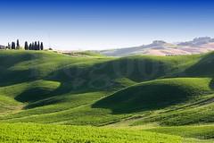 20160704_crete_senesi_siena_tuscany_889n9 (isogood) Tags: italy landscapes horizon country scenic tuscany crete siena cretesenesi asciano senesi