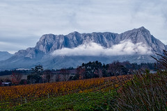 Fluffy Take Two (MarcCooper_1950) Tags: leica sky mist mountains clouds landscape southafrica outdoors lumix vineyard scenery wine cloudy vivid panasonic winery aurora fields hdr lightroom westerncape coiors marccooper fz1000