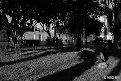 Dormiu na Praa (thcreis) Tags: street shadow bw luz composition nikon streetphotography sombra compo pb fotografia fullframe pretoebranco composio d610 fotografiaderua