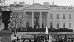 Commemorative Red Ribbon White House 2014 World AIDS Day 50177