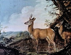 IMG_1636Q (jean louis mazieres) Tags: france museum painting musée peinture museo cognac peintres