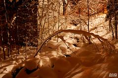 Moulin de Levnen (Damien Decanter) Tags: winter snow mill finland moulin hiver neige talvi kuopio mylly d5000 levnen