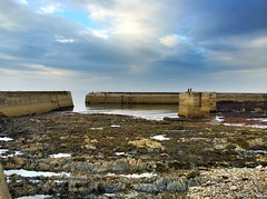 Buckie Harbour (14)
