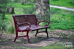 Take a seat (janet_grimaphotography) Tags: park photography chair couple parks melbourne together sit rest brimbank
