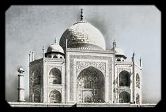 Agra IND - Taj Mahal Base, dome, and minaret 03