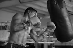 Creciendo en Tijuana (DP@Makers Creative Studio.) Tags: blancoynegro sports sport blackwhite box documentary deporte bajacalifornia tijuana boxing deportes documental boxeo zonanorte sportphotography boxlatino fotografíadedeporte