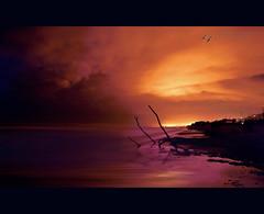 High Tide at long exposure (swaily ◘ Claudio Parente) Tags: longexposure nikon mare abruzzo pineto nikond300 swaily