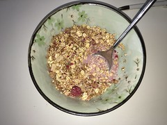#314 White berry granola (Like_the_Grand_Canyon) Tags: msli