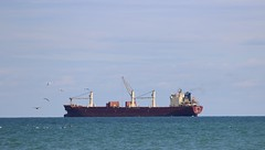Ocean Castle (jmaxtours) Tags: lake ontario german lakeontario freighter portdalhousie portdalhousieontario oceancastle 1850meters gearedbulker reedereikarlschlutergmbh grosstonnage18825