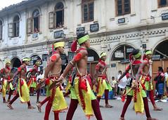 Perahera Dancers (IMG_3677b) (Dennis Candy) Tags: street boy green heritage yellow festival youth dance day culture buddhism dancer parade srilanka ceylon procession tradition serendipity pageant performer hinduism kandy clapper perahera slapstick serendib serendip esala