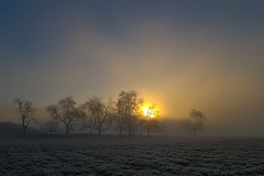 Good morning (michael.taferner) Tags: trees winter sun cold nature field fog canon landscape eos dawn frozen outdoor 6d 24105l