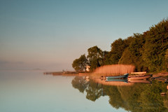 Lough Carra (Colin Redmond) Tags: longexposure trees ireland summer mist misty sunrise boats loughcarra westofireland