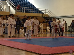 stefanou_15_5_2016_knockdown_35