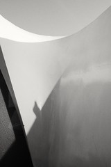* (photoginthefog) Tags: shadow abstract abstractart sillouette birdshadow streetgeometry