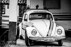 Fusca (Leandro Rinco) Tags: emergencivehicle blackwhite volkssedan fusca tiradentes minasgerais brasil brazil bombeiros relíquea vw aircooled bugs beetle fusquinha vintage clássico volkswagen volkslovers aircooledforever firefighters fire fireman firefighter volla kugelporsche coccinelle peta косτенурка weevil kotsengkuba kuplavolkkari cucaracha bogár عقروقة חיפושית maggiolino boble volky cepillo volunteerfirefighters emergency blackandwhite pretoebranco explore explored monochrome pb bw nocolor
