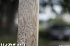 Sign at f1pt8 (mjardeen) Tags: test 50mm washington bokeh sony wa tacoma signpost fe f18 a7ii sooc a7m2 ilce7m2