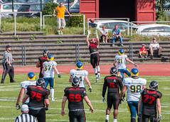 GFL-2016-Panther-9905.jpg (sgh-fotos) Tags: football nfl bowl german panthers sack dsseldorf touchdown defence invaders hildesheim dline fumble gfl amarican quaterback oline interception ofence