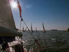 IMG_6046.jpg (mctowi) Tags: ostsee stralsund segeln strelasund nurmi greifswalderbodden albinexpress canonpowershotg10 ger526 regattarundrgen2016