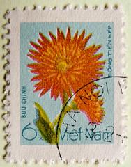 beautiful stamp Vietnam 6 Xu (Dahlie, Chi Cúc Thược dược, Dahlia, Ντάλια, Yıldız çiçeği, Dália, 大麗菊, Daaliat, Dahliasläktet, Jurginas, Dālijas, लाहुरे फूल, Dalia, ダリア, Георгина, Daalia, Dalija) timbre Viêt Nam selo Vietnã sello francobollo Vietnam postzeg (stampolina, thx for sending stamps! :)) Tags: dahlia blue orange flower fleur flor stamp vietnam blau bunga 花 blume fiore timbre postzegel dalia xu bloem selo פרח sello زهرة viêtnam dahlie цветок vietnã λουλούδι ダリア wietnam việtnam dália dahlien francobollo frímerki 우표 เวียดนาม frimærke znaczek daaliat daalia 베트남 thượcdược známka dālijas frimerke וייטנאם فيتنام jurginas prangko dalija yıldızçiçeği ντάλια вьетнам 大麗菊 γραμματόσημο георгина βιετνάμ pastmarka víetnam แสตมป์ почтоваямарка طابعبريدي vijetnam postapulu dahliasläktet temthư вијетнам בולדואר поштанскамарка poštanskamarka chicúcthượcdược लाहुरेफूल 邮票越南 切手ベトナム